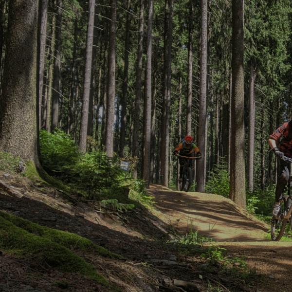 trailacademy-mtb-fahrtechnik-kurse-mountainbike-training-köln-bonn-nrw-bikeschule-sauerland-winterberg-kurse